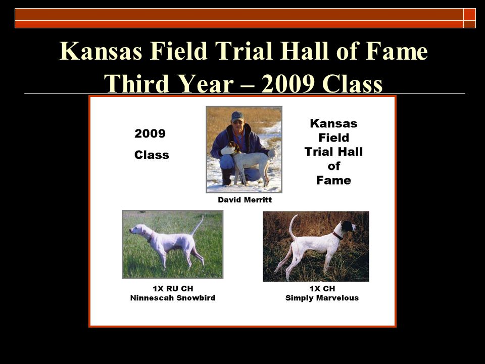 Kansas Field Trial Hall of Fame Third Year – 2009 Class