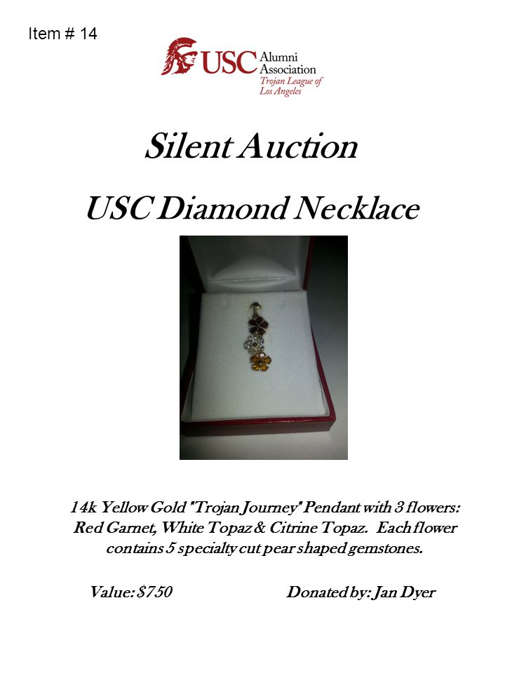 Silent Auction USC Diamond Necklace Item # 14