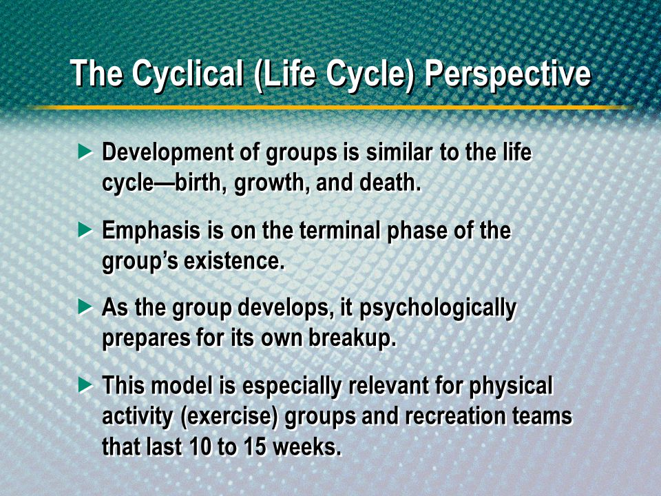 The Cyclical (Life Cycle) Perspective