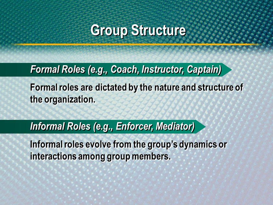 Group Structure Formal Roles (e.g., Coach, Instructor, Captain)