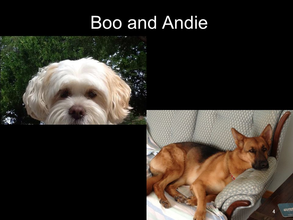 Boo and Andie LAC