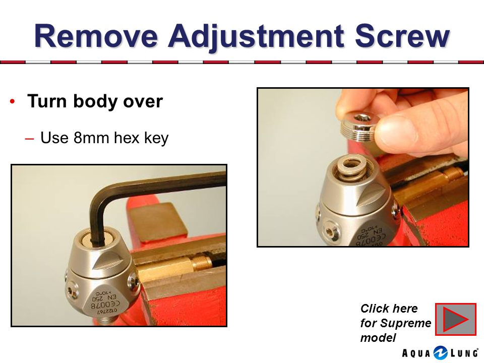 Remove Adjustment Screw
