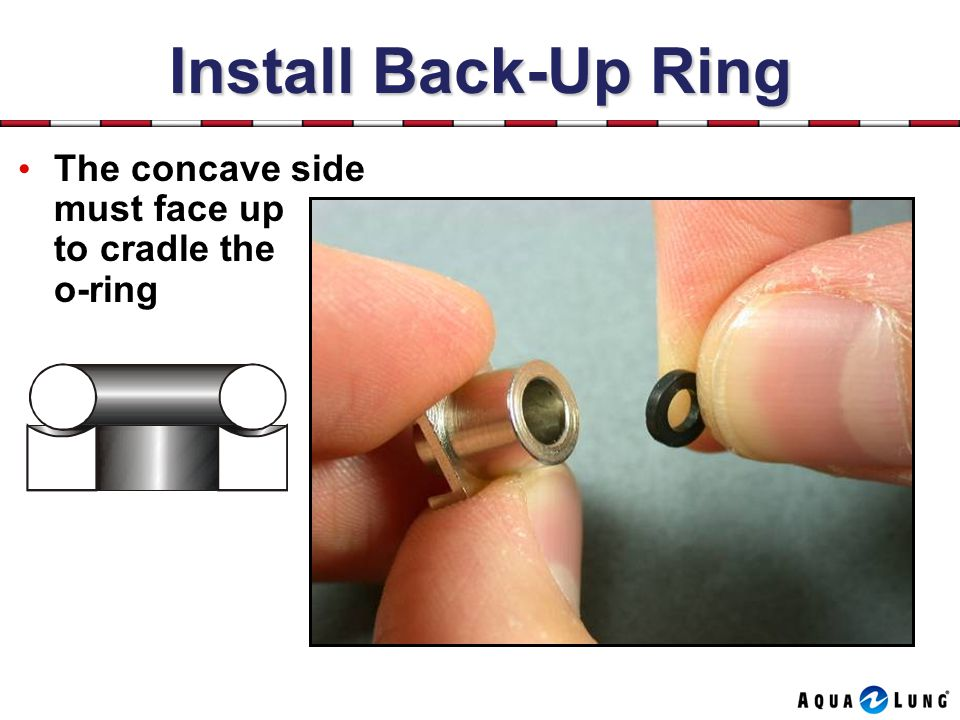 Install Back-Up Ring The concave side must face up to cradle the o-ring