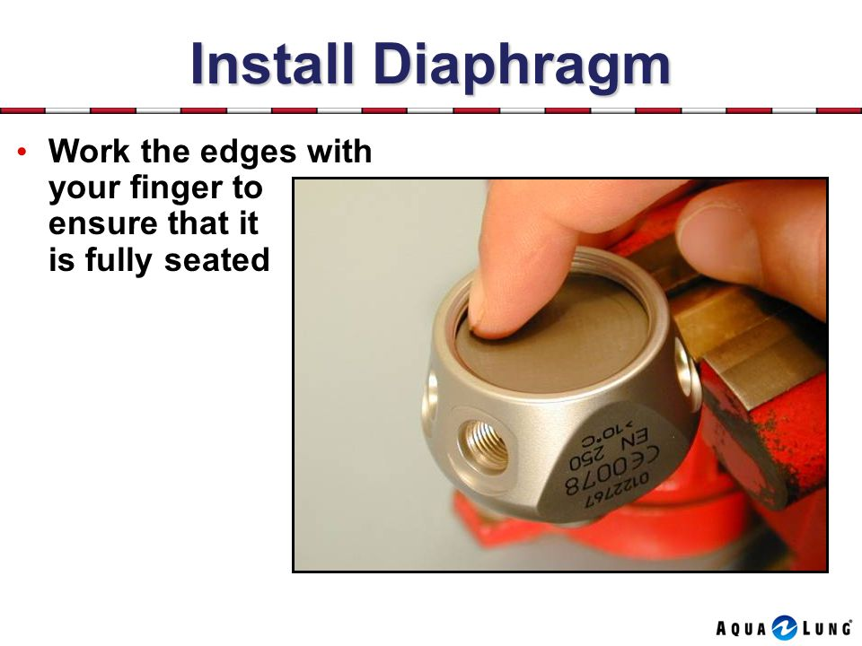 Install Diaphragm Work the edges with your finger to ensure that it is fully seated.