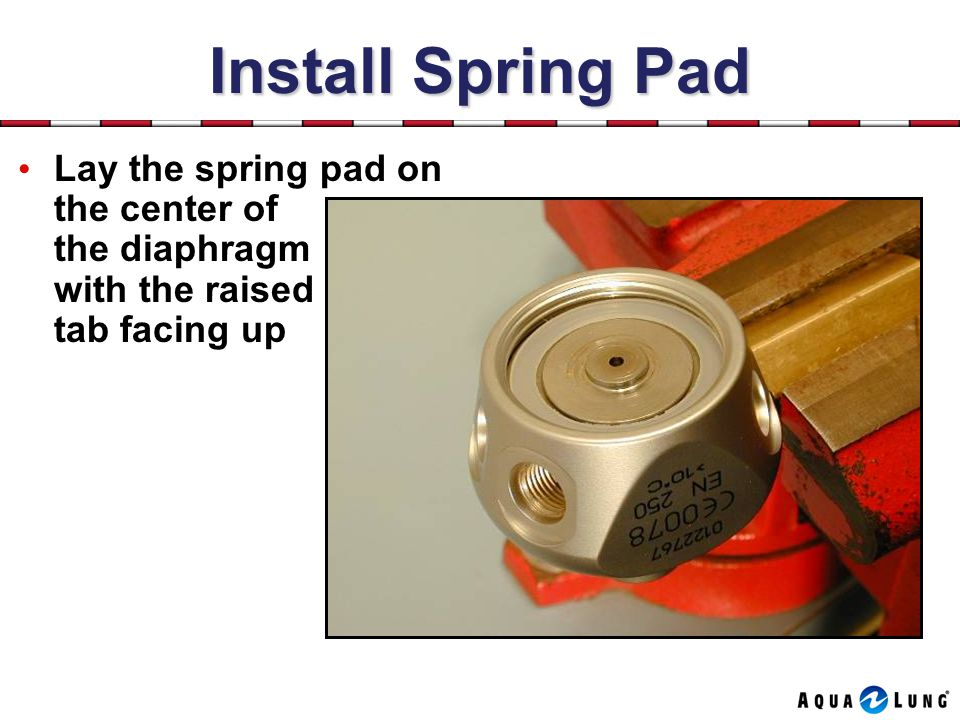 Install Spring Pad Lay the spring pad on the center of the diaphragm with the raised tab facing up.