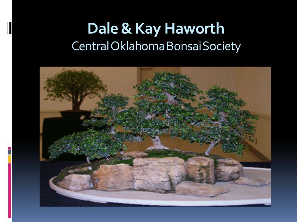 Dale & Kay Haworth Central Oklahoma Bonsai Society