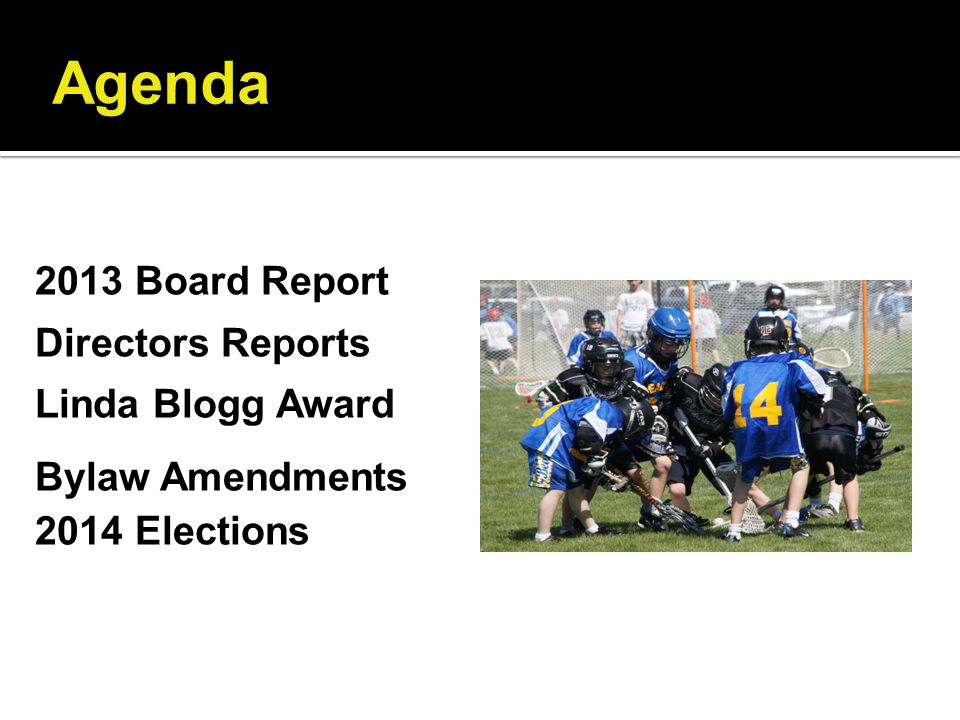 Agenda 2013 Board Report Directors Reports Linda Blogg Award