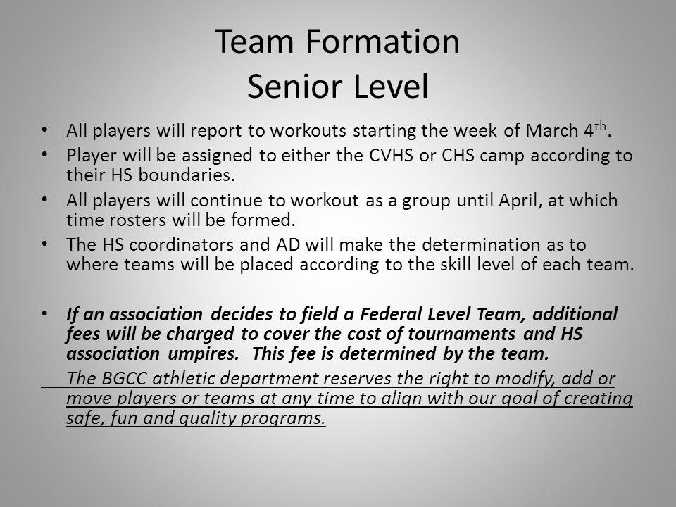 Team Formation Senior Level