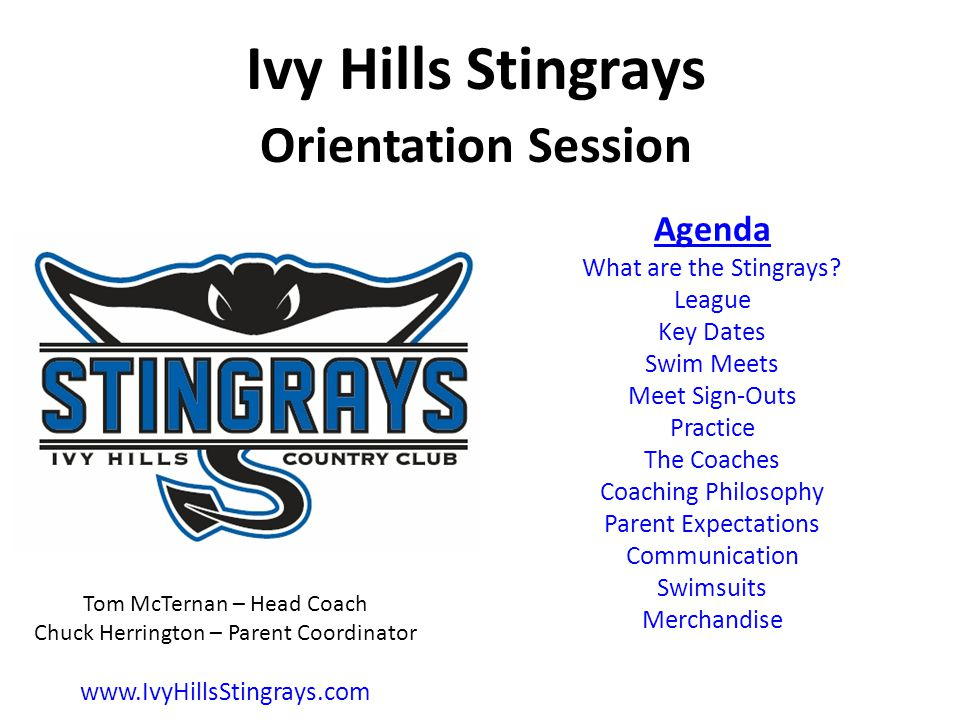 Ivy Hills Stingrays Orientation Session