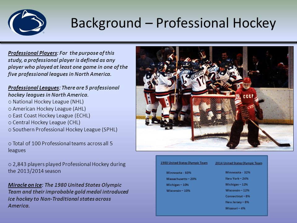 Background – Professional Hockey