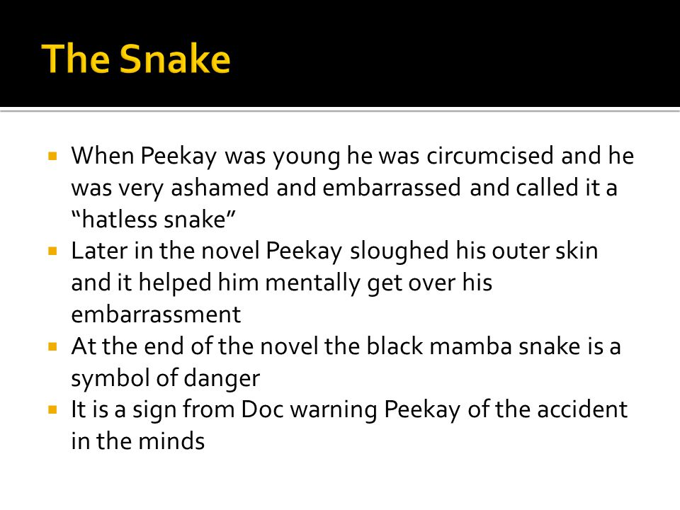The Snake When Peekay was young he was circumcised and he was very ashamed and embarrassed and called it a hatless snake