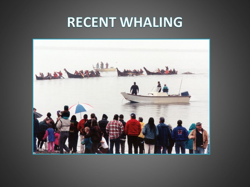 RECENT WHALING