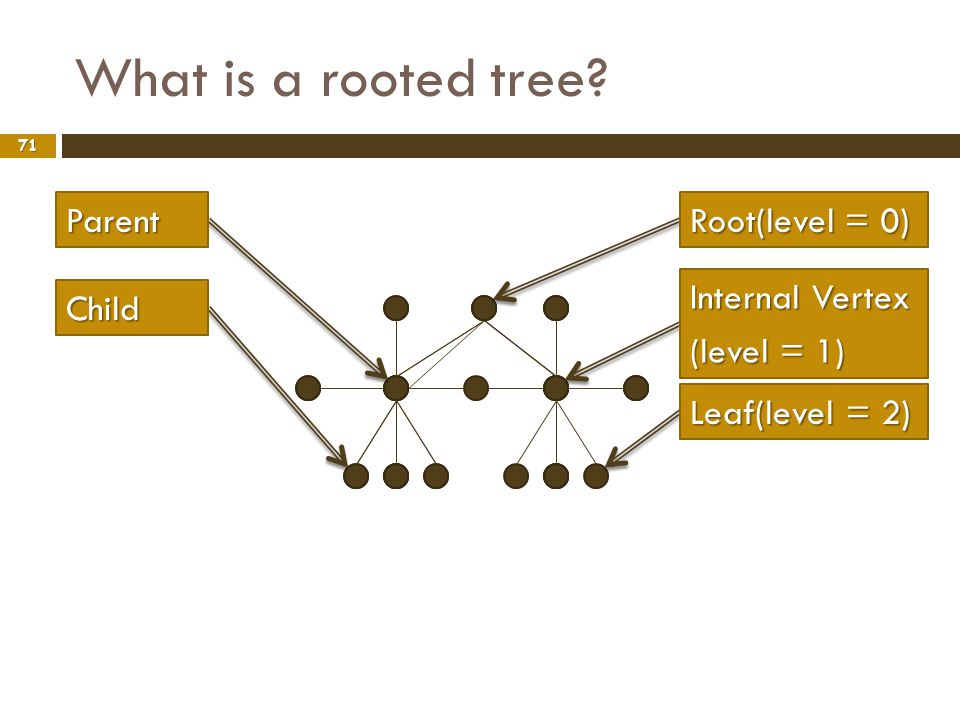 What is a rooted tree Parent Root(level = 0) Internal Vertex