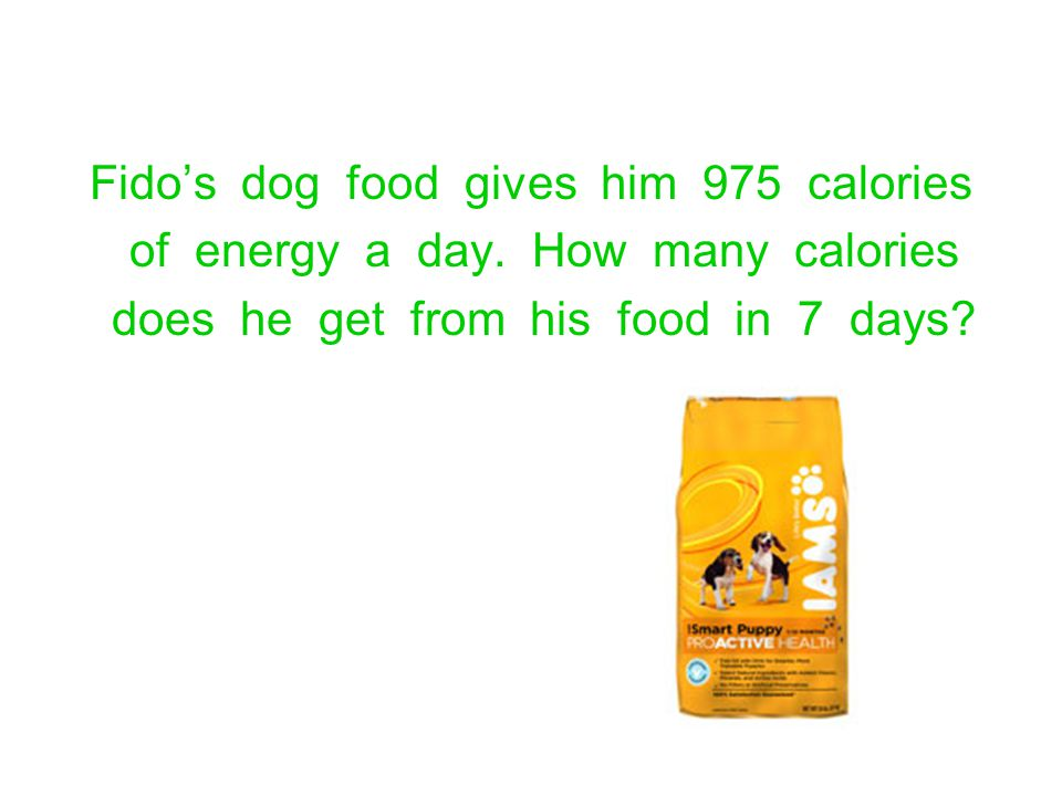 Fido's dog food gives him 975 calories