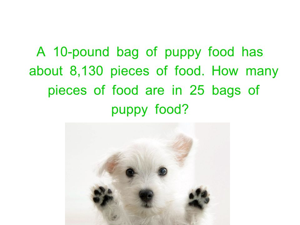 A 10-pound bag of puppy food has about 8,130 pieces of food. How many