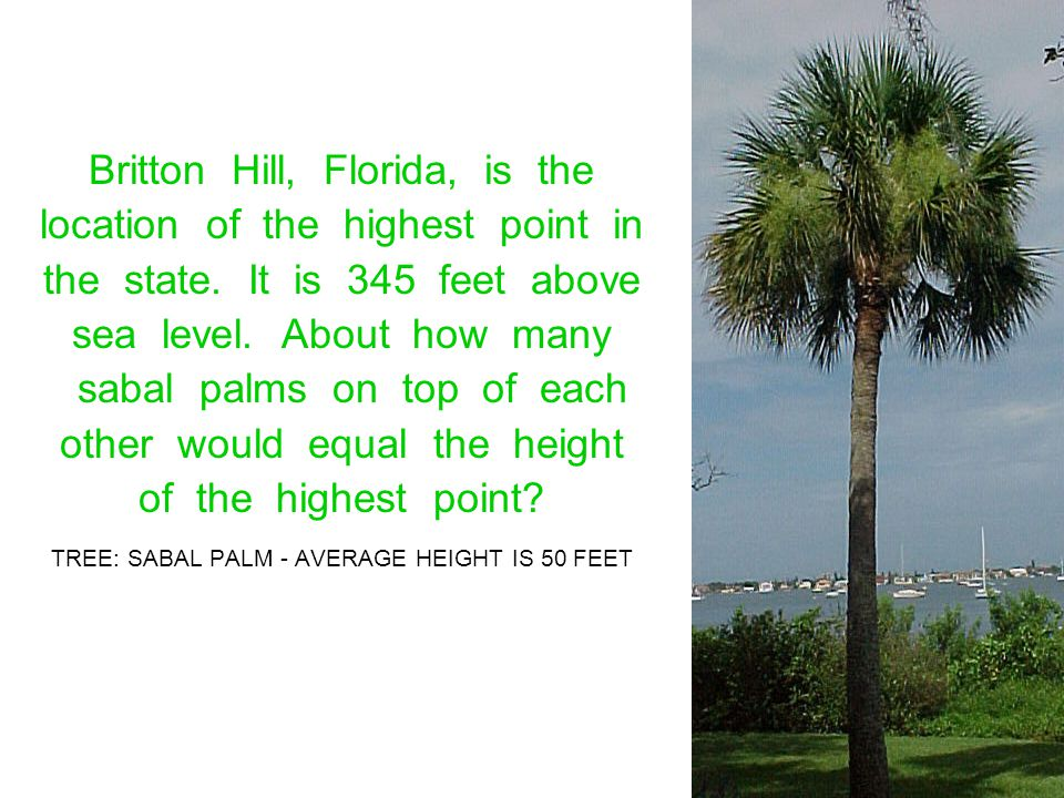 Britton Hill, Florida, is the location of the highest point in