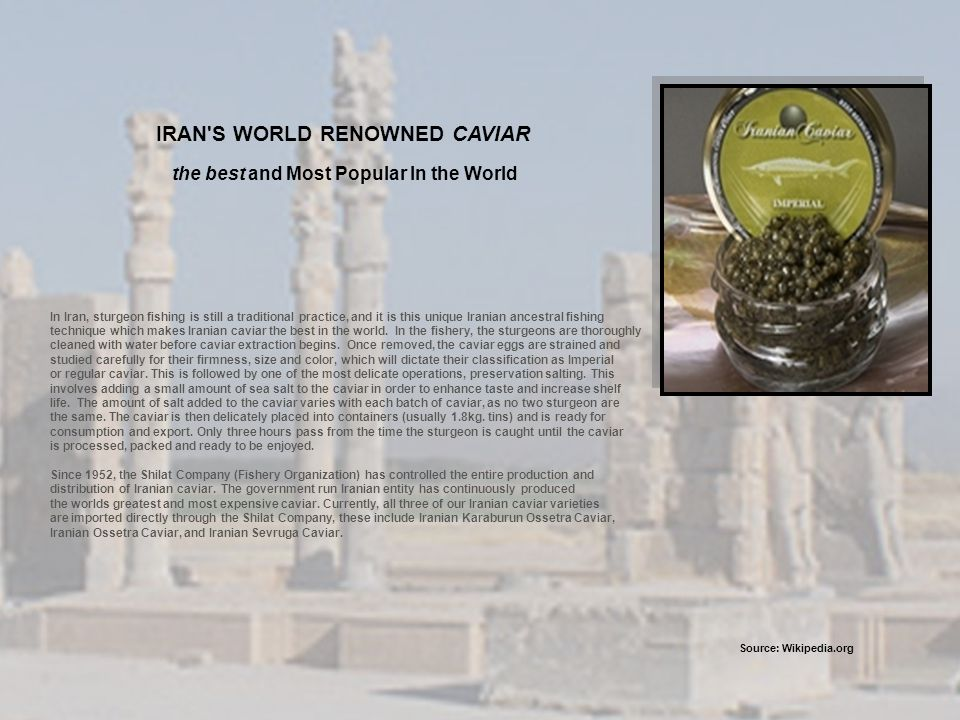 IRAN S WORLD RENOWNED CAVIAR the best and Most Popular In the World