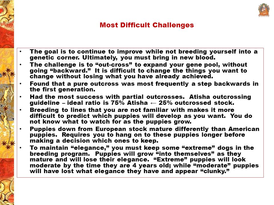 Most Difficult Challenges