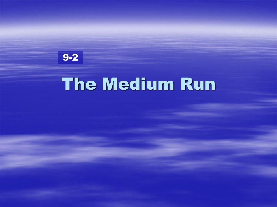 9-2 The Medium Run