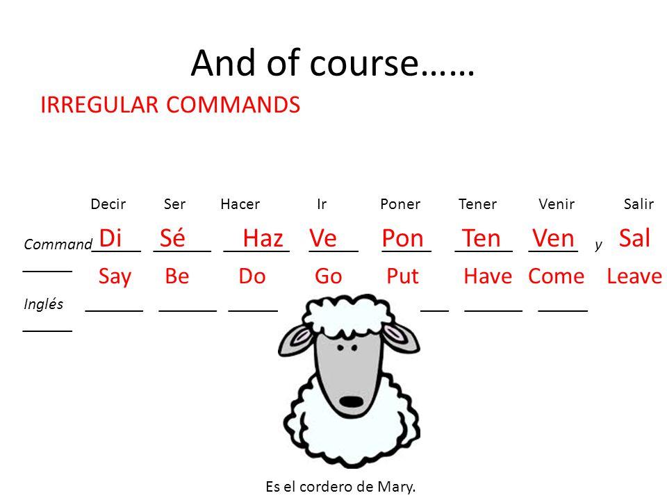 And of course…… Di Sé Haz Ve Pon Ten Ven Sal IRREGULAR COMMANDS
