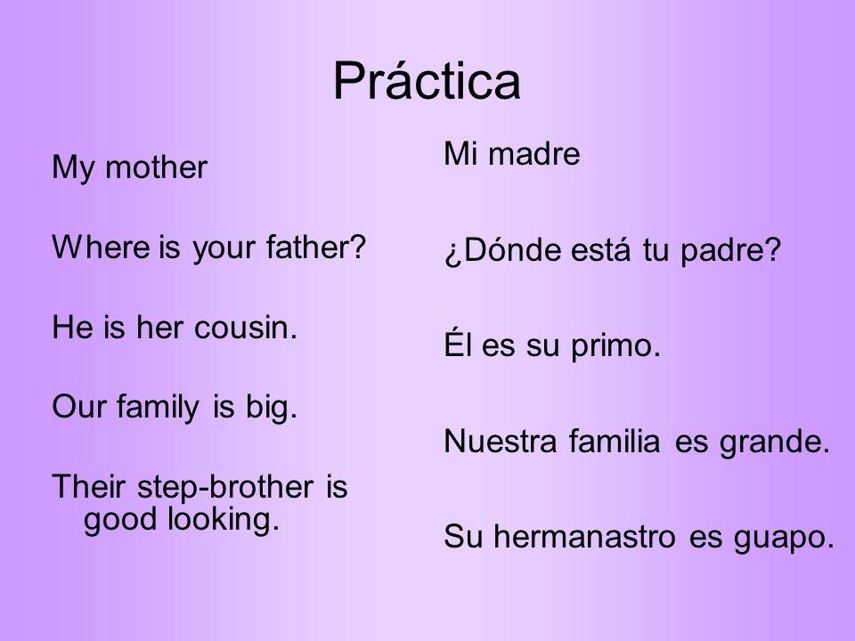Práctica Mi madre ¿Dónde está tu padre Él es su primo. Nuestra familia es grande. Su hermanastro es guapo.