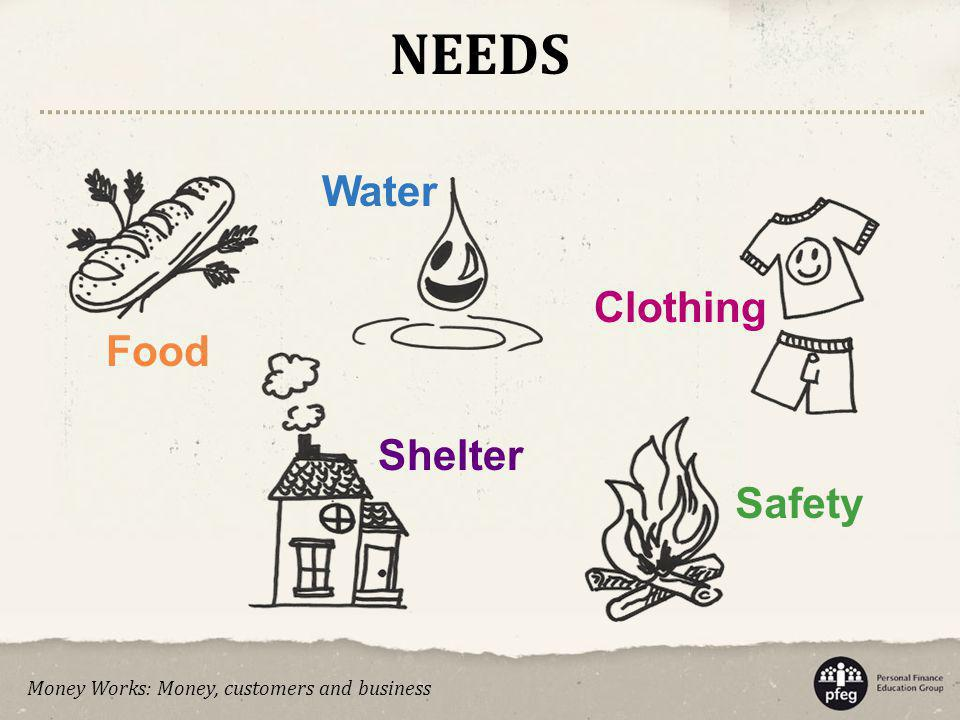 NEEDS Water Clothing Food Shelter Safety