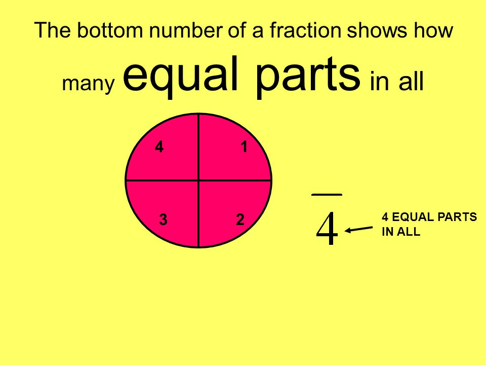 The bottom number of a fraction shows how many equal parts in all