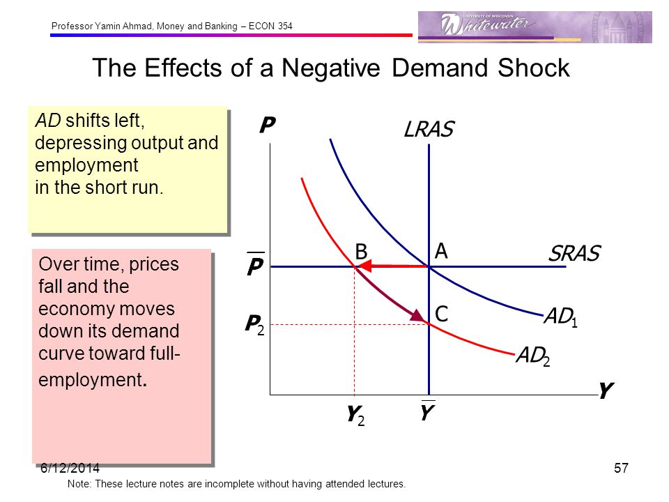 The Effects of a Negative Demand Shock