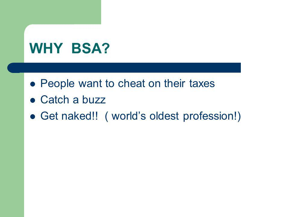 WHY BSA People want to cheat on their taxes Catch a buzz