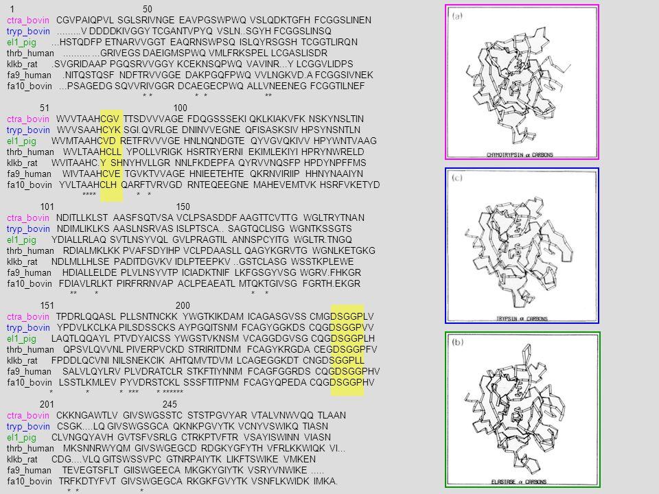 1 50 ctra_bovin CGVPAIQPVL SGLSRIVNGE EAVPGSWPWQ VSLQDKTGFH FCGGSLINEN.