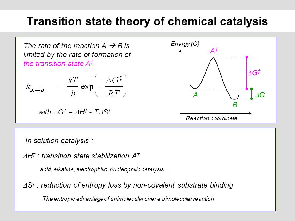 rates of reaction concentration essay Rate of reaction - sodium thiosulphate and hydrochloric acid essays: over 180,000 rate of reaction - sodium thiosulphate and hydrochloric acid essays, rate of reaction - sodium thiosulphate and hydrochloric acid term papers, rate of reaction - sodium thiosulphate and hydrochloric acid research paper, book.