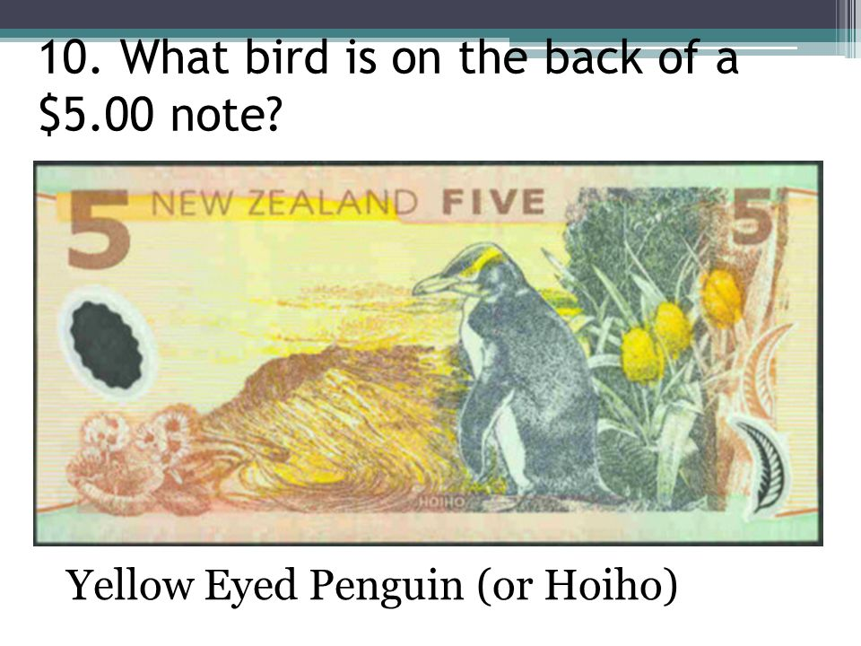 10. What bird is on the back of a $5.00 note