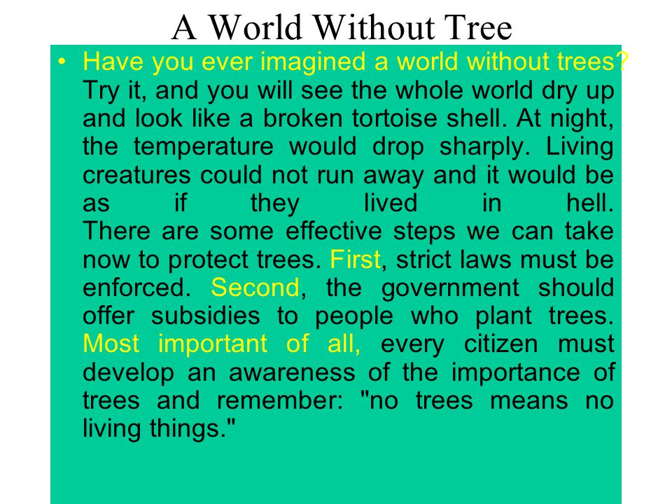 A World Without Tree