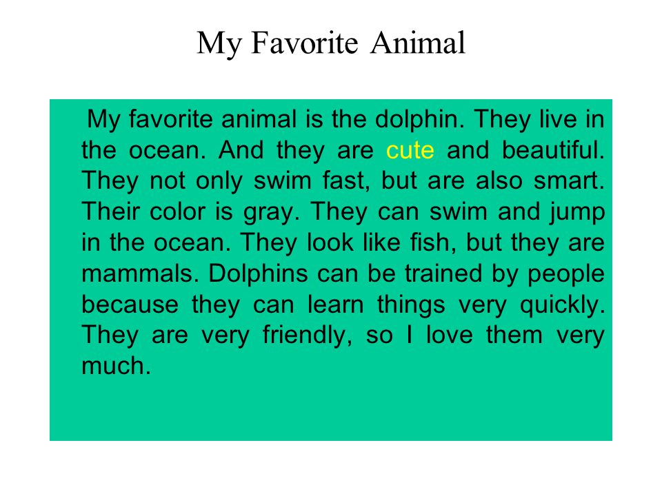 Essay on favorite animal