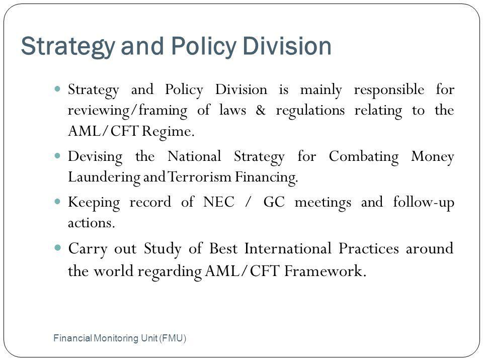 Strategy and Policy Division