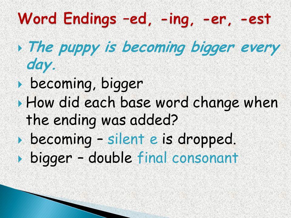 Word Endings –ed, -ing, -er, -est