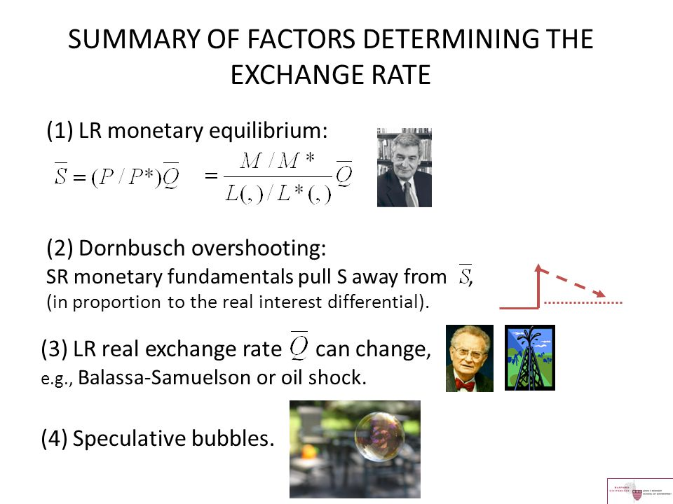 SUMMARY OF FACTORS DETERMINING THE EXCHANGE RATE