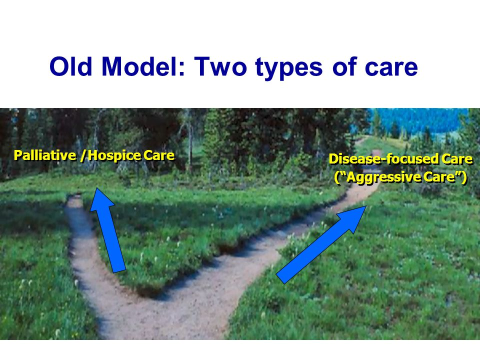 Old Model: Two types of care