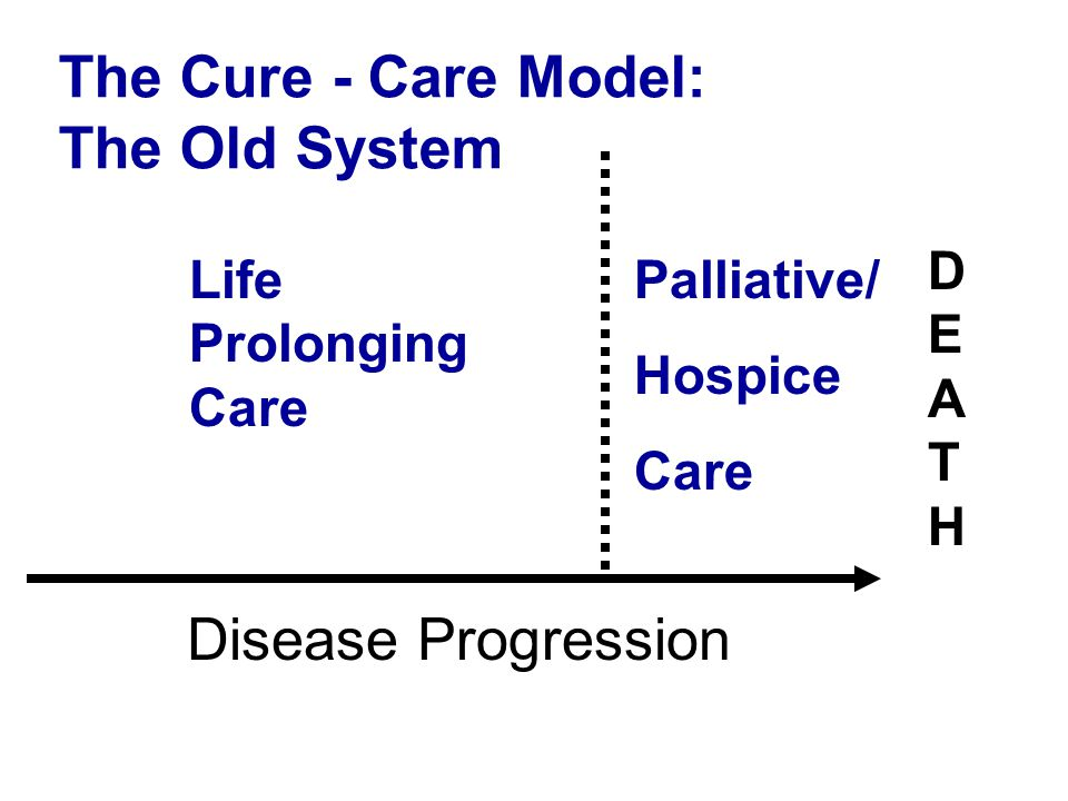The Cure - Care Model: The Old System