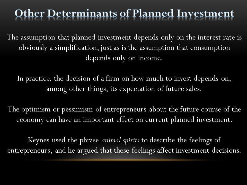Other Determinants of Planned Investment