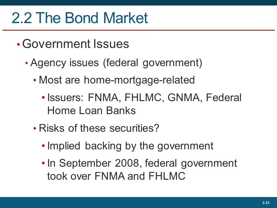 2.2 The Bond Market Government Issues