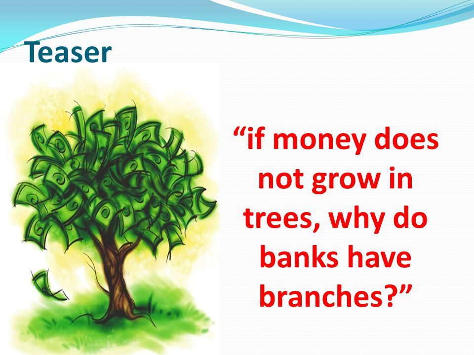 if money does not grow in trees, why do banks have branches