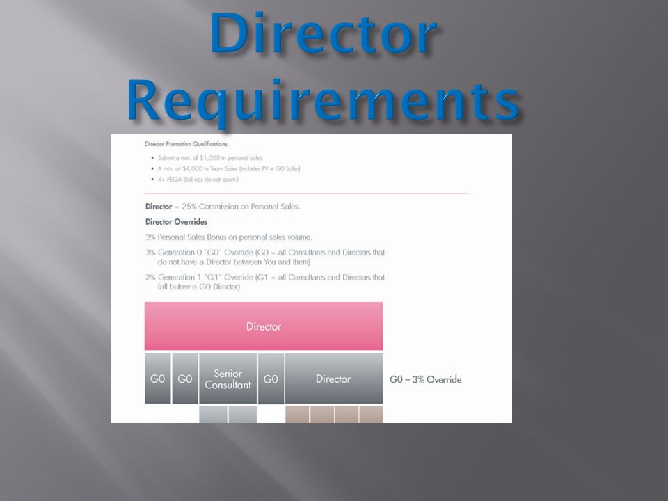 Director Requirements