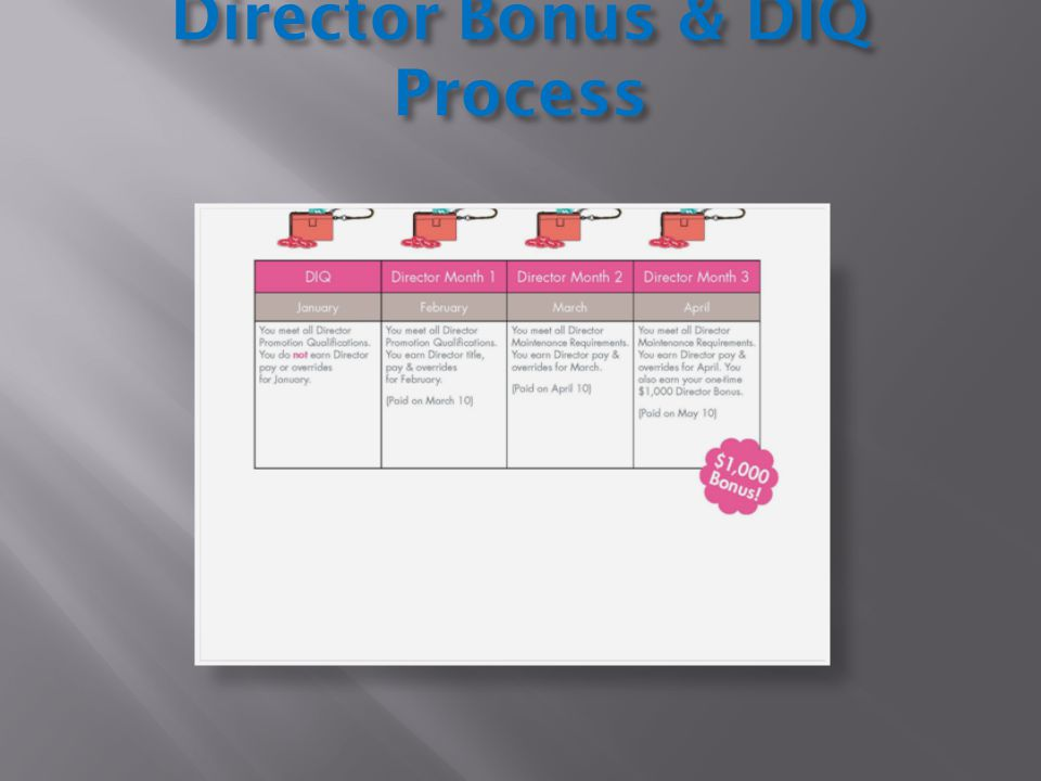 Director Bonus & DIQ Process