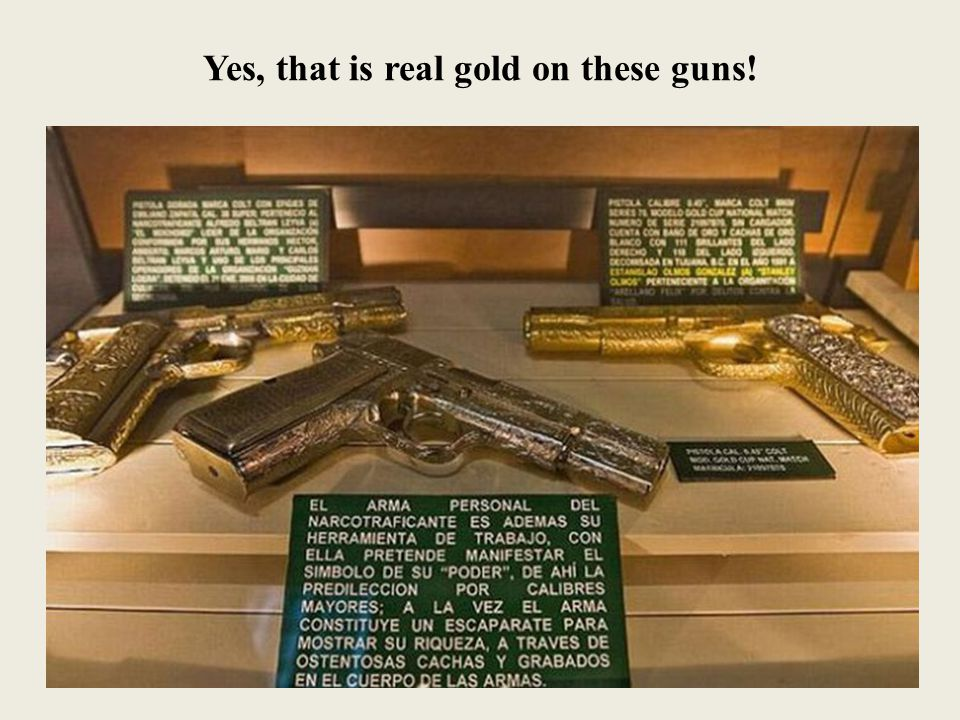 Yes, that is real gold on these guns!