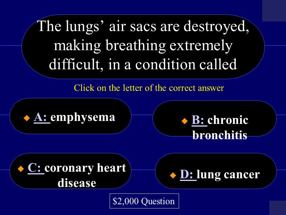 C: coronary heart disease