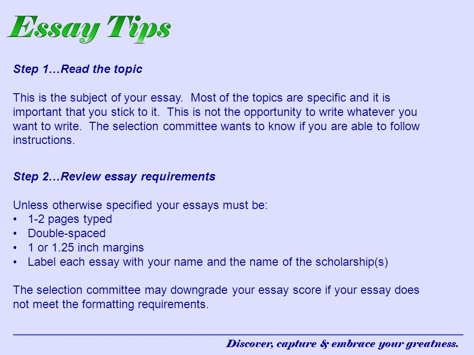 essay format example   How Do I Format An Essay    English Essay Writing  Tips com   Good To Know    Life Hacks    Pinterest   High school english