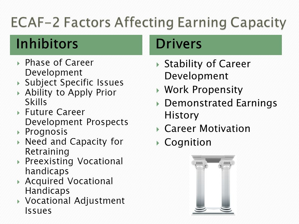 ECAF-2 Factors Affecting Earning Capacity