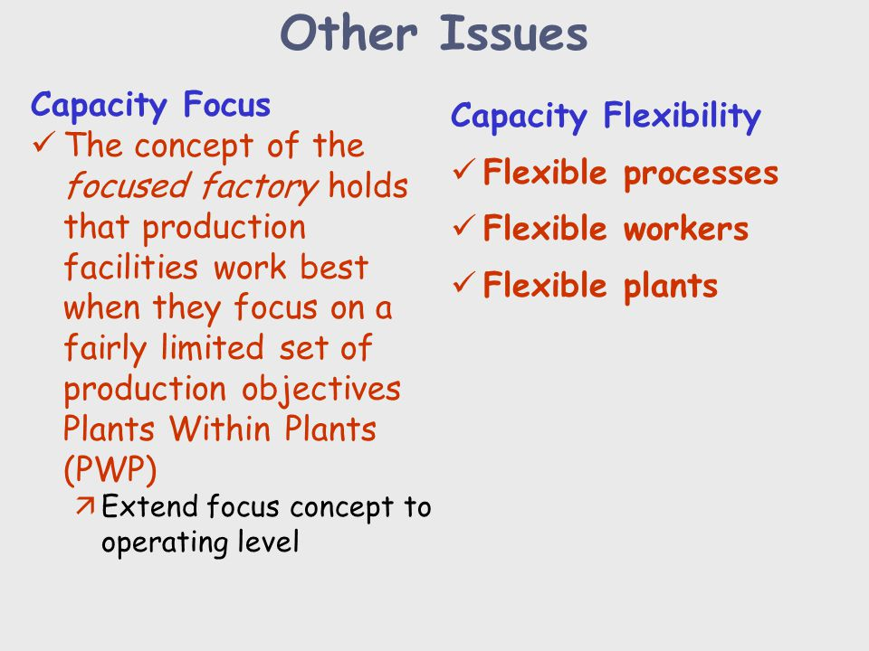 Other Issues Capacity Focus