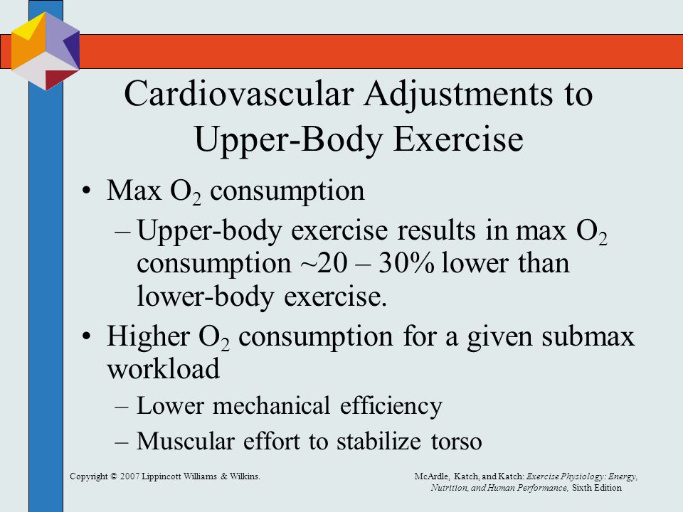 Cardiovascular Adjustments to Upper-Body Exercise